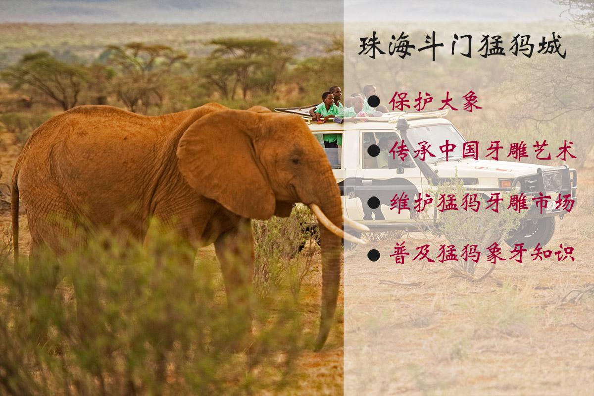 珠海斗门猛犸城 猛犸象牙工厂直销